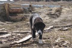 Gaba-April-25th-2011